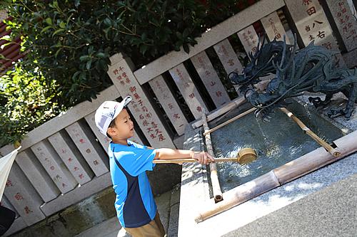 『大杉神社』の画像