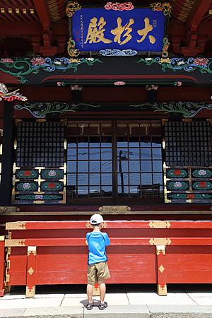 『大杉神社02』の画像