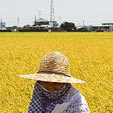 『米』の画像