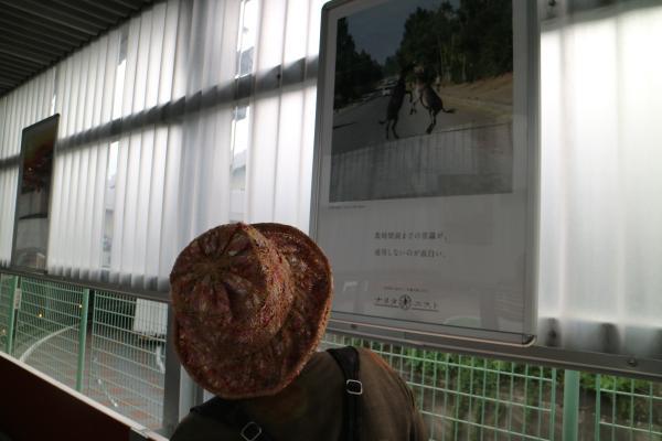 『成田⑦』の画像