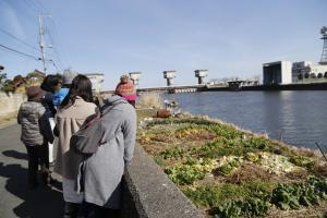 『新利根川』の画像