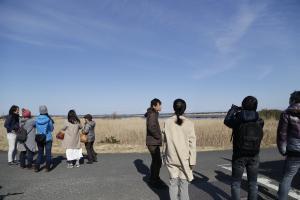 『霞ヶ浦湖畔』の画像