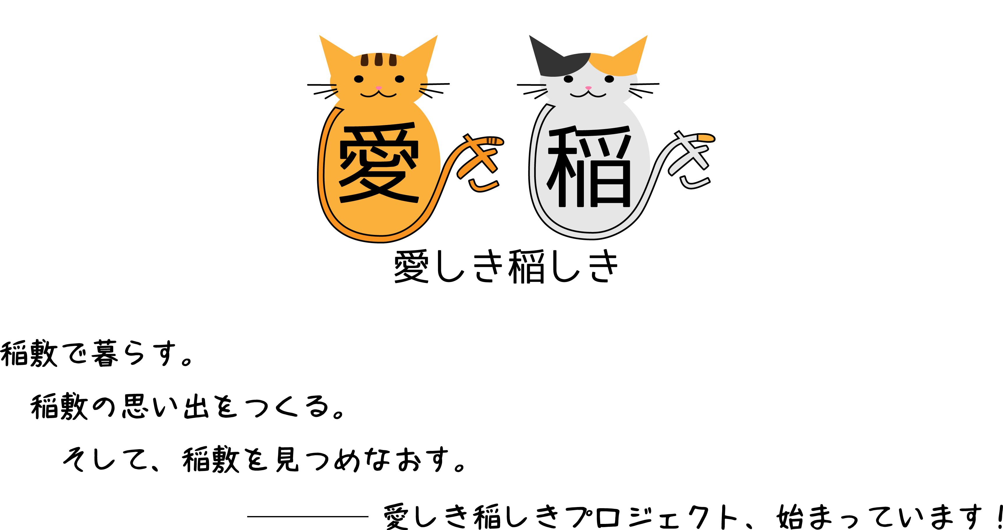 『愛しき稲しきネコ』の画像