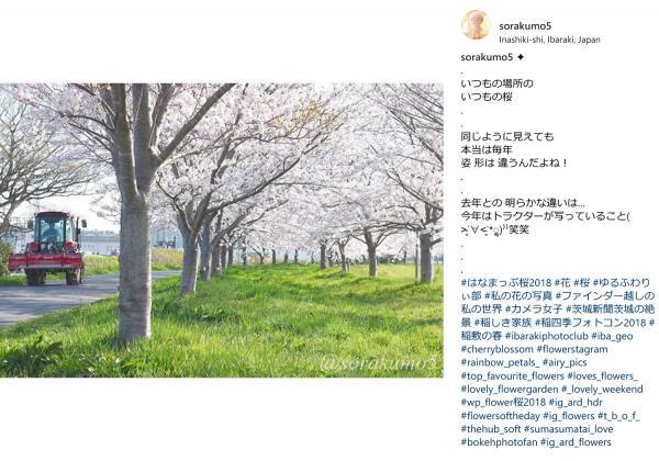 『『spring_2』の画像』の画像