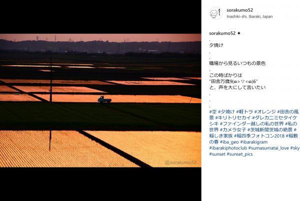 『『spring_5』の画像』の画像