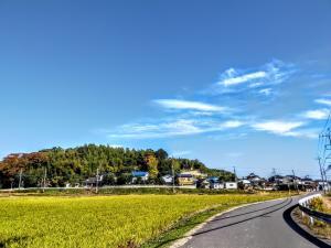 『inashiki_city4』の画像