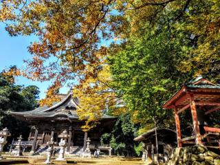『茨城県稲敷市移住体験ツアー』の写真